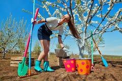 Женщина с граблями и лопатой Стоковые Фотографии RF