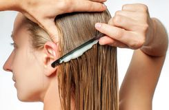 Женщина с гребнем прикладывает проводник волос на ее влажных белокурых волосах стоковая фотография