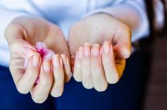 Женщина с длинными красными ногтями извлекая маникюр стоковое фото