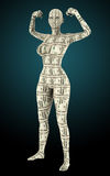 Женщина сделанная от денег Стоковые Изображения