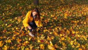 Женщина с желтыми кленовыми листами пука под деревом видеоматериал