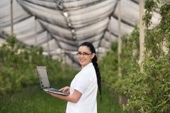 Женщина с компьтер-книжкой в яблоневом саде стоковые изображения