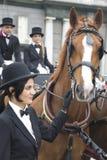 Женщина с лошадью и экипажом Стоковые Изображения RF