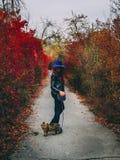 Женщина с прогулками кота на парке осени стоковое фото