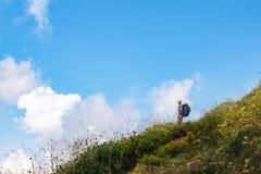 Женщина с рюкзаком смотрит небо Ландшафт лета горы с космосом экземпляра стоковые изображения rf