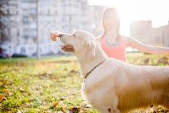 Женщина с собакой на прогулке Стоковое Изображение
