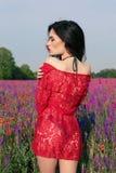 Женщина с темными волосами в элегантном бикини представляя на поле лаванды цветения лета Стоковые Фотографии RF