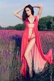 Женщина с темными волосами в элегантном бикини представляя на поле лаванды цветения лета Стоковое фото RF