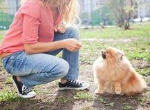 Женщина тренирует ее собаку Стоковая Фотография