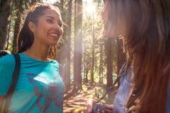 Женщина усмехаясь к другу на пути тропы в древесинах леса во время солнечного дня Группа в составе приключение лета людей друзей стоковые фото