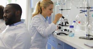 Женщина ученого работая при микроскоп обсуждая исследование с командой гонки смешивания коллег в современной лаборатории акции видеоматериалы