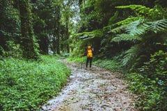 Женщина фотографа азиатская Путешествовать природа фотоснимка перемещение ослабляет в прогулке праздника в лесе стоковые изображения