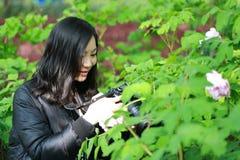 Женщина фотографа перемещения природы с солнечностью в ¼ Œ springï смотря экран carmer Стоковая Фотография RF
