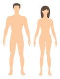 женщина человека иллюстрация штока