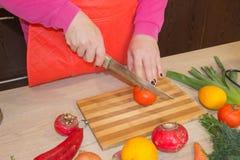 Женщина шеф-повара варя в кухне Кашевар женщины на кухне Стоковые Фото