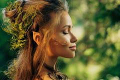 Женщина эльфа в лесе Стоковое Изображение