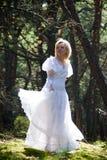 женщина fairy пущи Стоковое фото RF