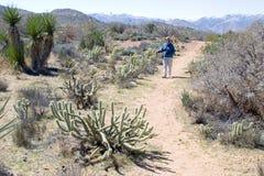женщина hiker возмужалая Стоковое Фото