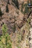 Женщина rappelling вниз с крутой и высокорослой скалы горы в скалистых горах с группой людей ждать на платформе для их поворота стоковое фото