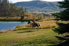 женщина riding лошади Стоковое Изображение