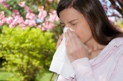 женщина sneeze цветения Стоковое Фото