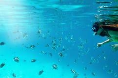 Женщина snorkeling с красочными рыбами стоковые фото