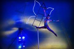 Женщина Trapeze летания стоковые изображения