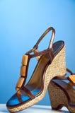 женщины ботинка Стоковые Изображения