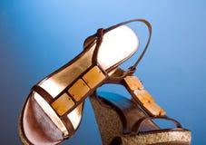 женщины ботинка Стоковые Фото