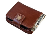 женщины бумажника дег Стоковые Изображения RF