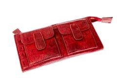 Женщины бумажника Стоковая Фотография RF