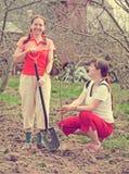 женщины вала плодоовощ счастливые засаживая Стоковое Изображение