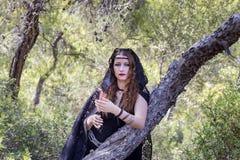 Женщины ведьмы во время хеллоуина в лесе Стоковое Изображение RF