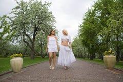 женщины весны 2 стоковое изображение