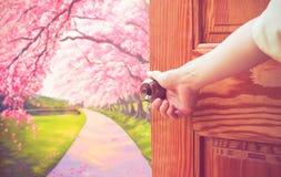 Женщины вручают ручку открыть двери или раскрывают дверь стоковое фото