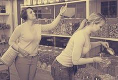 2 женщины выбирая гайки Стоковые Фотографии RF