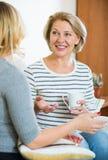 2 женщины выпивая чай и говоря на отечественном интерьере Стоковое фото RF