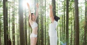 Женщины выполняя йогу против деревьев Стоковая Фотография