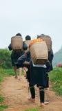 женщины Вьетнама трибы sapa холма Стоковое Изображение RF