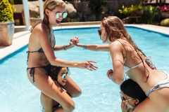 Женщины в бикини имея потеху в бассейне Стоковое Изображение RF