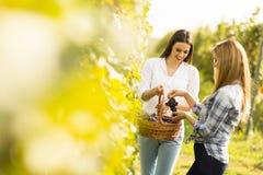 2 женщины в винограднике Стоковое Фото