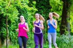 Женщины в лесе бежать для спорта Стоковое Изображение RF