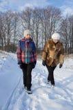 2 женщины в зиме Стоковое Изображение RF