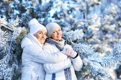 Женщины в одеждах зимы представляя outdoors Стоковые Изображения