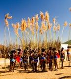 Женщины в традиционных костюмах маршируя на танец 01-09-2013 Lobamba Umhlanga aka Reed, Свазиленд Стоковое Изображение