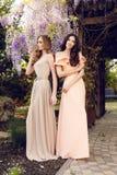 Женщины в элегантных платьях, представляя в саде весны цветения Стоковое Изображение