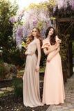 Женщины в элегантных платьях, представляя в саде весны цветения Стоковая Фотография