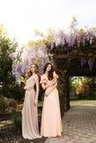 Женщины в элегантных платьях, представляя в саде весны цветения Стоковое Изображение RF