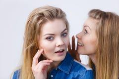 2 женщины говоря сказы, сплетню слухов Стоковые Изображения RF