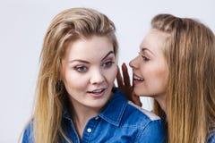 2 женщины говоря сказы, сплетню слухов Стоковая Фотография RF